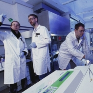 Bayer Konzern:             Einblicke in den Arbeitsalltag