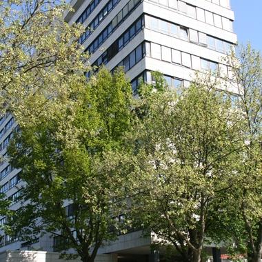 GFT Technologies AG: Standort Frankfurt/ Eschborn