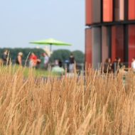 QuestBack AG: Feierabend-Grillen auf der Dachterrasse