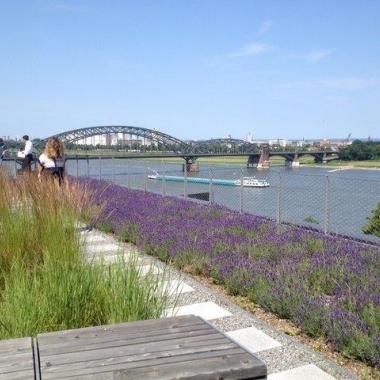 Questback: Blick über das Gustav-Heinemann-Ufer