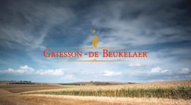 Karriere bei Griesson - de Beukelaer